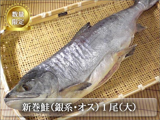 新巻鮭山漬けのオスのみ使用!!