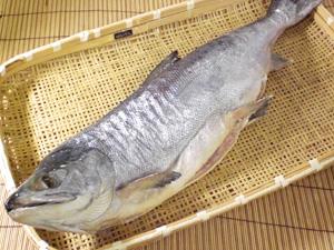 新巻鮭中身